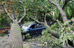 Vihar miatti áramszünet és károk országszerte